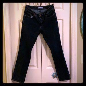Anne Taylor Loft Blue Jeans